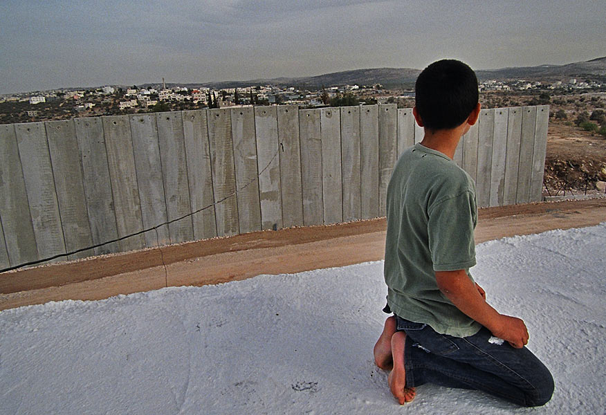 vida palestina: