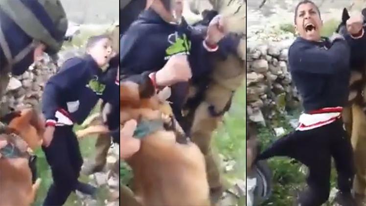 Ataque de perro adolescente de Tennessee