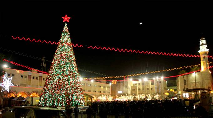 Historia del arbol de navidad aciprensa