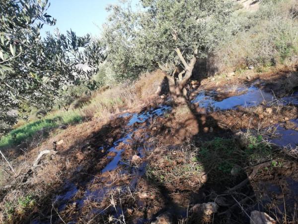 Los colonos israelíes inundan las tierras de cultivo palestinas con aguas residuales