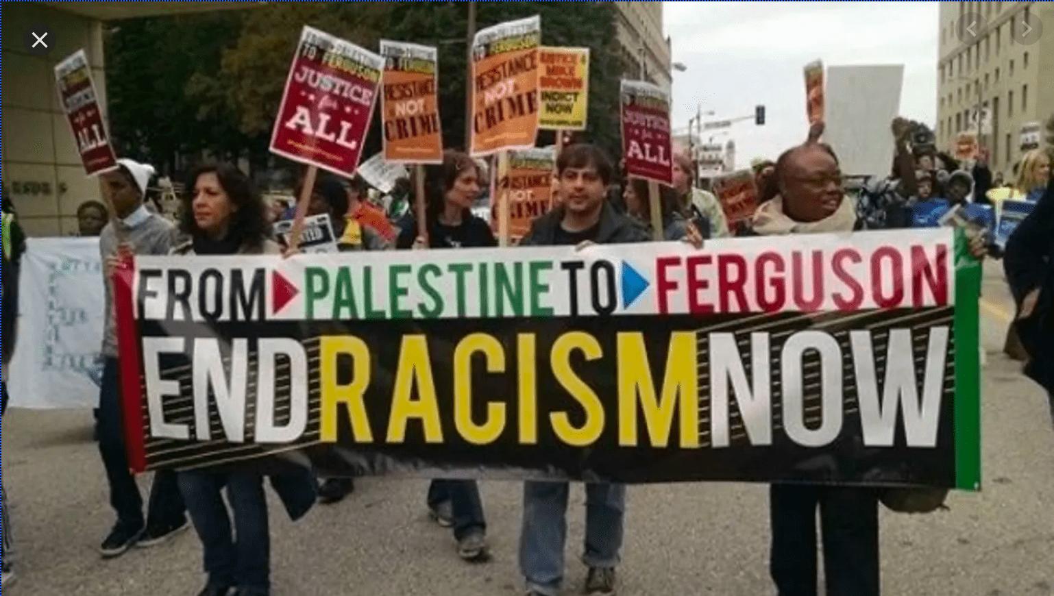 Ninguna difamación tramposa impedirá que sigamos luchando por los Derechos Humanos palestinos